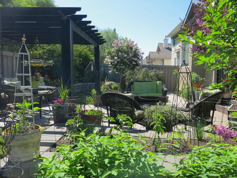 48 Garden June 2016