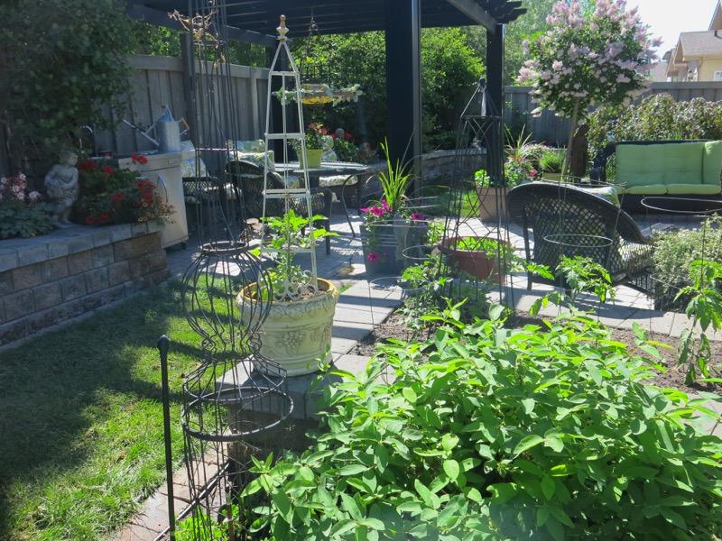 49 Garden June 2016