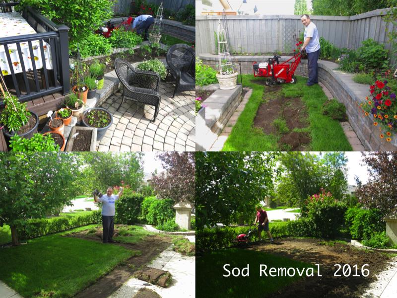 4c Sod Removal