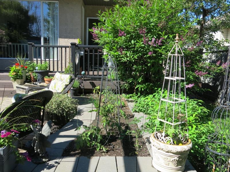 50 Garden June 2016