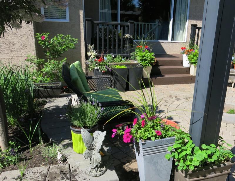 53 Garden June 2016