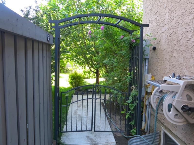 54a Garden June 2016