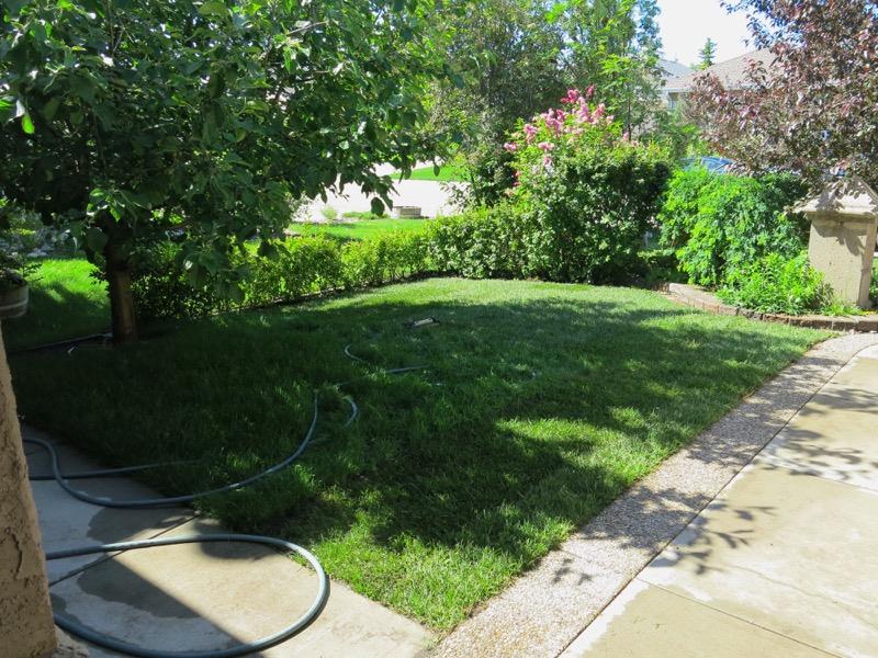 61 Garden June 2016