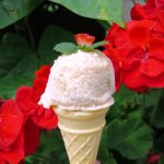 1 Diviant Tutti Fruitti Ice Cream