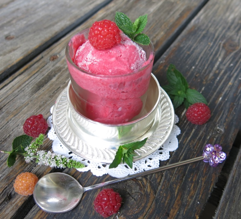 16 Thermomix Seedless Raspberry Ice Cream