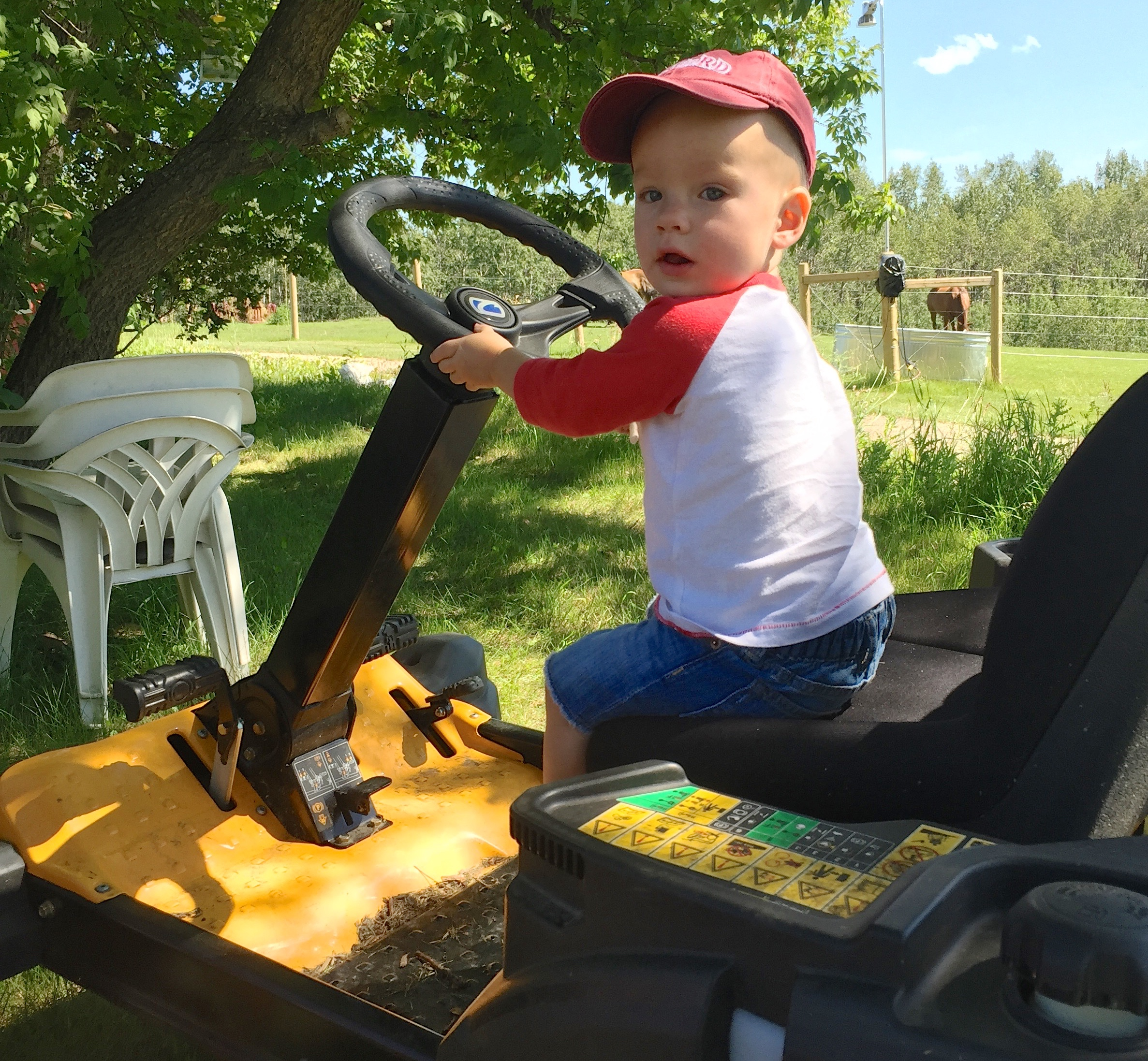 41 William on Tractor in Blackfalds July 2016