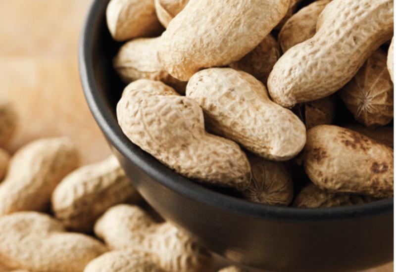 Peanut Bureau Canada : Headed to the Peanut Harvest Festival!